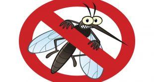 تولید اسپری دفع کننده حشرات