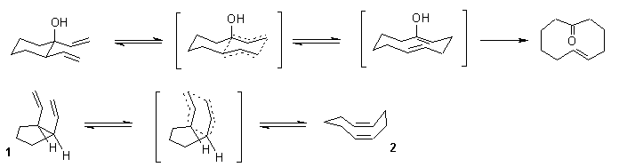 Anionic Oxy Cope Rearrangement transition states