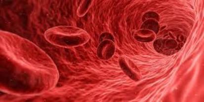 روشهای درمان کم خونی در دوران بارداری