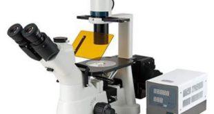 میکروسکوپ فلورسانس چیست و چه کاربردهایی دارد