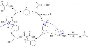 مکانیسم واکنش نووناجل (واکنش دوبنر) توسط دکتر مهدی نباتی متخصص طراحی دارو و شیمی آلی در تهران